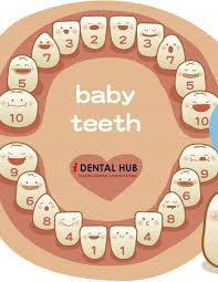 6 Baby Teeth My Mom Will Be Proud That I Pinned This Baby