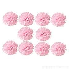 Tissue Paper Pom Poms Flower Balls Ai Life 8 Inch Tissue Paper Pom Poms 10 Pack Hanging Lantern Flower Ball Pom Poms For Birthday Party Wedding Party Bridal Shower Baby Shower Nursery