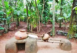 Image result for spice plantation