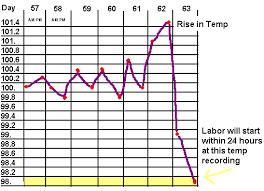 Canine Pregnancy Temperature Chart Actual Temperature Chart