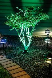8 led miniature wedge base led tier light bulb installed in fixtures by tree