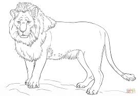 Small Picture Standing Lion coloring page Free Printable Coloring Pages