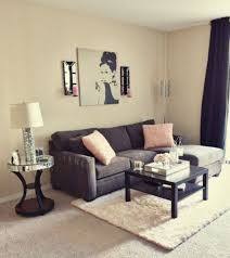 Cute Living Room Ideas For Apartments Living Room Apartment Ideas Beauteous Apartment Living Room Decorating Ideas Pictures