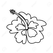 かわいい夏の花アイコン ベクトル イラスト デザイン