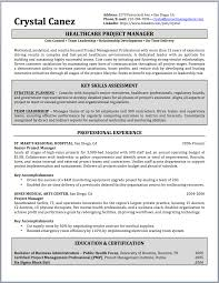Project Manager Resume Examples Tomyumtumweb Com