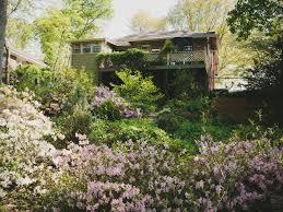 ideas for hillside and shade gardens