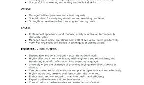 Technical Skill Examples For A Resume Letter Resume Directory