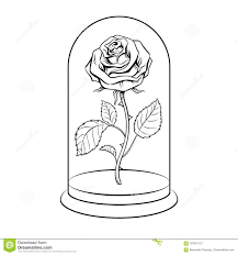 rose under gl cap coloring book vector stock vector ilration of poster detailed