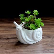 1pc cartoon snail ceramic planter for succulents desktop succulents pot decorative mini flower pot home garden