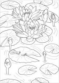Use online photo framing to spice up the pics you have and make everyone understands what. Flowers Vegetation Coloring Pages For Adults