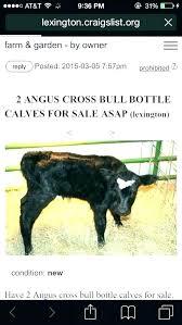 craigslist dallas farm garden farm and garden by owner farm garden info craigslist dallas farm garden