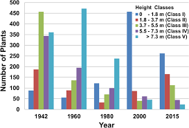 Height Structure Of The Saguaro Population In The Census