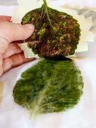 lifting leaf