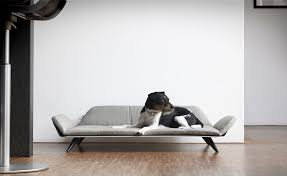 modern dog furniture. Post-Modern Pet Furniture Modern Dog A