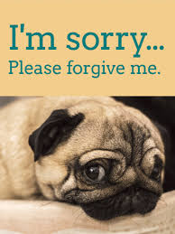 please for give me pug i m sorry card
