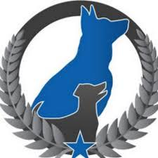 Dog Training Elite Utah County - YouTube