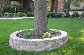 retaining wall around a tree