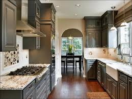 best paint for kitchen wallsKitchen  Beige Cabinets Taupe Grey Paint Ivory Kitchen Cabinets