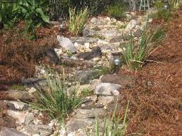 Small Picture 100 Dry Rock Garden Dry Creek Bed Landscaping Stones