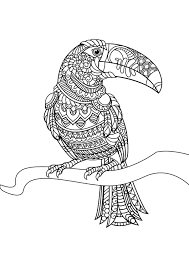 Zentangle Horse Coloring Pages At Getdrawingscom Free For