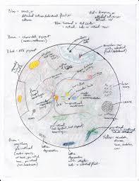 Fundus Chart Basics Of Fundus Retina Drawing Shortwhitecoats Com