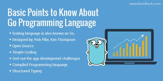 Basic Coding Language Basic Points To Know About Go Programming Language Trendy