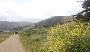 Image result for Pacifica, CA open space picture