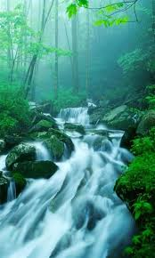 nature wallpapers for phones. Unique Wallpapers River Flowing Wallpaper For Phone Intended Nature Wallpapers For Phones R