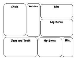 Free Printable Owl Pellet Bone Sorting Chart