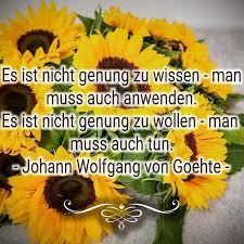 Sonnenblumenkind Sonnenblumenkind Würdet Ihr Dem Zustimmen