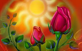 3d Hd Nature Rose Flower Wallpaper