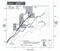 Challenges Of Beef Cattle Production From Tropical Pastures
