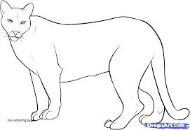 coloring page mountain lion lion