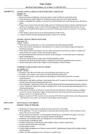 Social Media Skills Resume Global Social Media Resume Samples Velvet Jobs 10