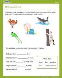 NEW 178 FIRST GRADE SCIENCE WORKSHEETS ANIMALS | firstgrade worksheet