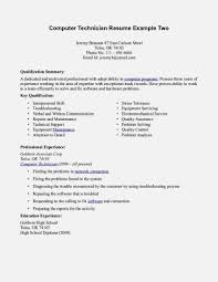 Resume Format For It Support Engineer Sample Technical Analyst