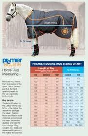 128 Best Horsey Stuff Rugs Images In 2019 Rugs Horses