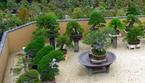 bonsai gardens. shunkaen bonsai garden gardens s