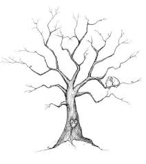how to draw family tree family tree drawings easy simple living tree in the world places
