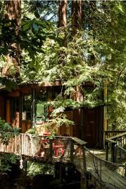 The Tiny Fern Forest Treehouse Lincoln VT  Available For Rent Treehouse Vacation California