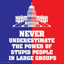 Buy Stupid People Activist Independent Congress Novelty Quote Saying