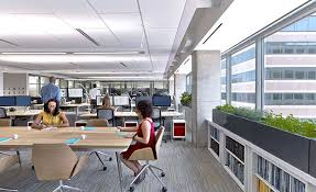 Business Office Design Custom Decorating Design
