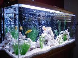 fish tank lighting ideas. Homemade Fish Tank Decoration Ideas Lighting R