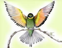 bird drawing tumblr flying. Exellent Flying Bird Drawing Flying At GetDrawings In Tumblr