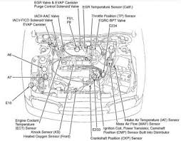 1999 infiniti g20 engine diagram wiring diagram libraries 96 infiniti g20 engine diagram not lossing wiring diagram u2022g20 engine diagram wiring diagram todays