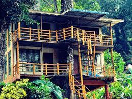 tree house resort. Jungle-jive-treehouse-kerala-treehouse-resort-munnar Tree House Resort