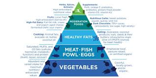 Food Pyramid Project The Primal Blueprint Food Pyramid Healthy Tradie Project