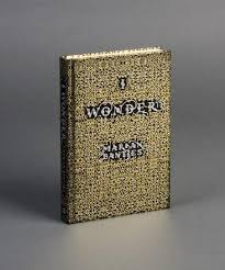book i wonder by graphic artist marian bantjes