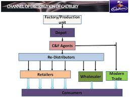 Prepare A Chart For Distribution Network For Different Products Sales And Distribution Of Cadbury