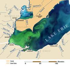 the new normal recordbreaking  lake erie algae bloom may be